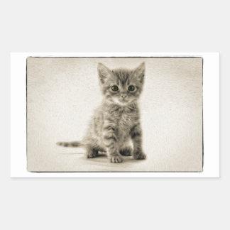虎猫の子猫 長方形シール