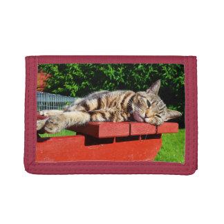 虎猫猫の財布