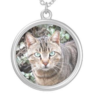 虎猫猫 シルバープレートネックレス