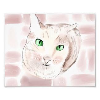 虎猫猫 フォトプリント