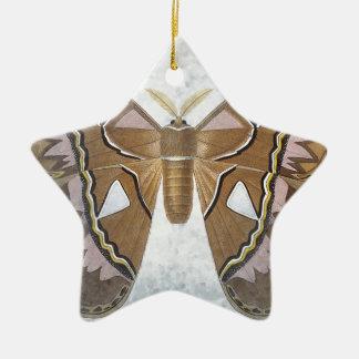 虫のコレクション-ガ セラミックオーナメント