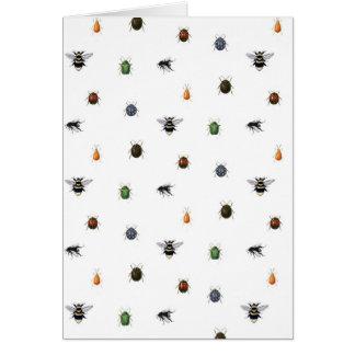 虫の生命 カード
