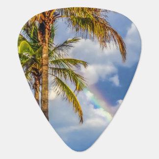 虹のやしギターピック ギターピック