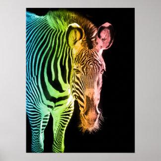 虹のシマウマ ポスター