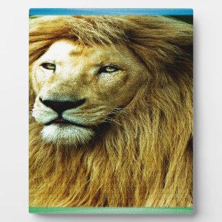虹のボーダーを持つライオン フォトプラーク