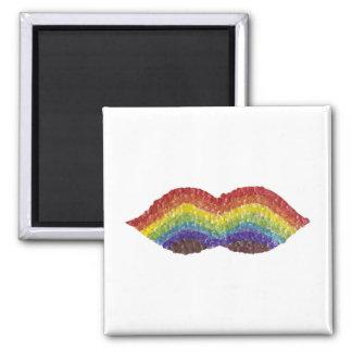 虹の口ひげの磁石 マグネット