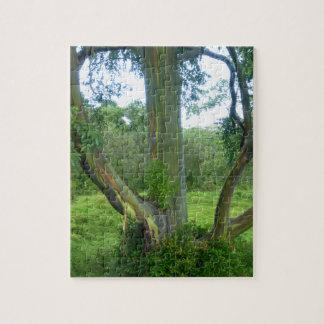 虹の木 ジグソーパズル