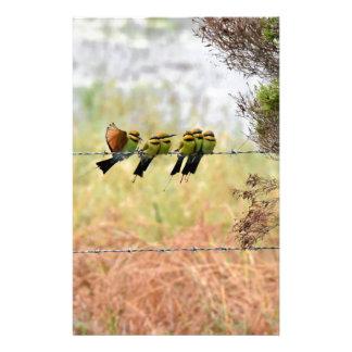 虹の蜂蜜の食べる人の鳥クイーンズランドオーストラリア 便箋