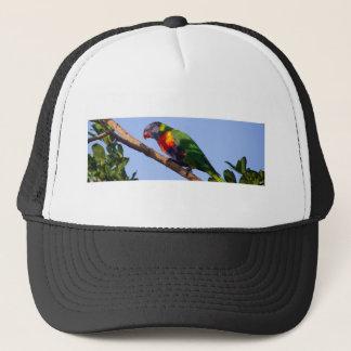 虹の鳥 キャップ