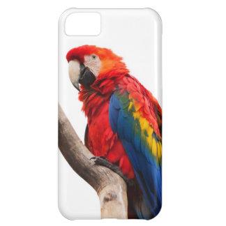 虹はiPhone 5のためのコンゴウインコのオウムのイメージを着色しました iPhone5Cケース