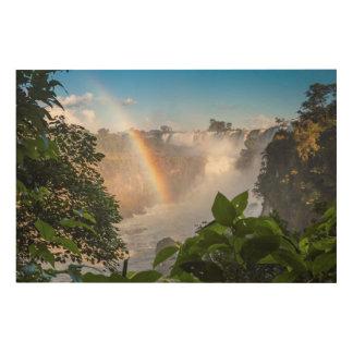 虹、アルゼンチンが付いているIguazúの滝 ウッドウォールアート