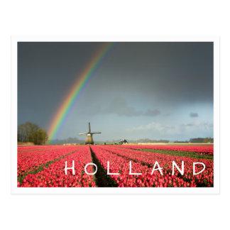 虹、チューリップおよび風車のオランダの文字の郵便はがき ポストカード
