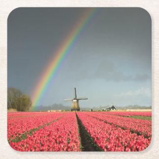 虹、チューリップおよび風車のコースター スクエアペーパーコースター