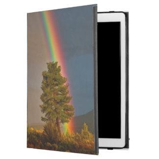 """虹 iPad PRO 12.9"""" ケース"""