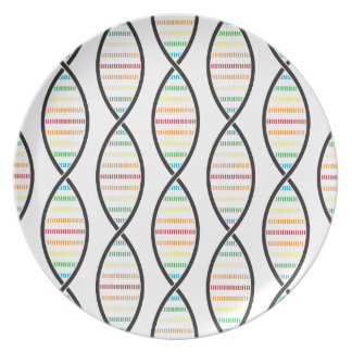 虹DNAの繊維 プレート