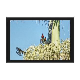 虹LORIKEET及びバナナの鳥オーストラリア キャンバスプリント