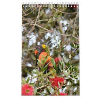 虹LORIKEET田園クイーンズランドオーストラリア カレンダー