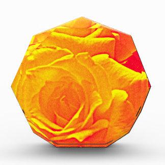 蛍光バラのオレンジ 表彰盾