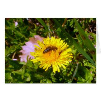 蜂およびタンポポ カード