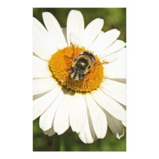 蜂および白い花 便箋