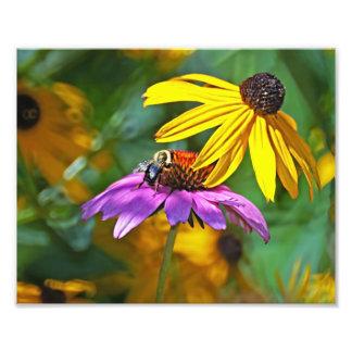 蜂および花 フォトプリント