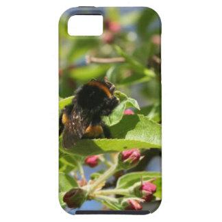 蜂のつまらないIphoneの場合 iPhone SE/5/5s ケース