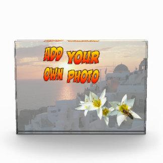 蜂の写真のブロックを持つ白いチューリップ フォトブロック