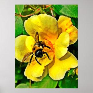 蜂の挑戦 ポスター