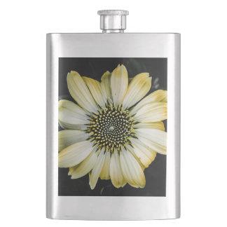 蜂蜜の花の黄色のConeflowerのフラスコ フラスク
