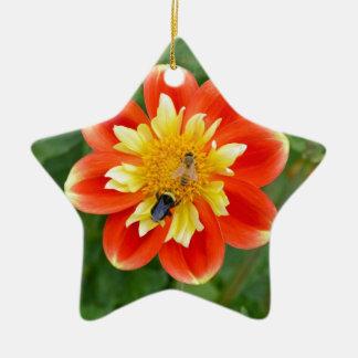 蜂蜜の蜂が付いているオレンジダリアの花 陶器製星型オーナメント