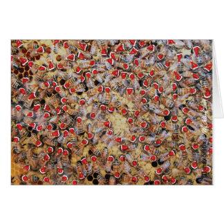 蜂蜜の蜂のクリスマスの挨拶状 カード