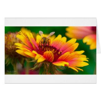 蜂蜜の蜂の郵便はがき カード