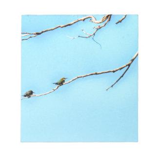 蜂蜜の蜂食べる人の鳥クイーンズランドオーストラリア ノートパッド