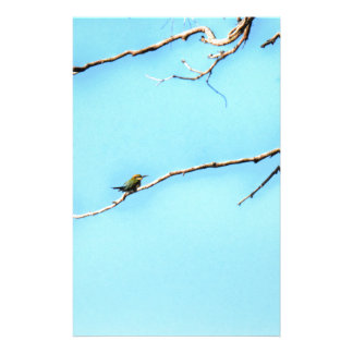 蜂蜜の蜂食べる人の鳥クイーンズランドオーストラリア 便箋