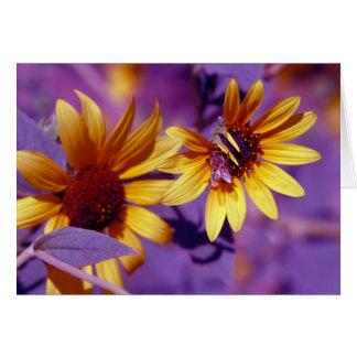 蜂蜜の蜂 カード
