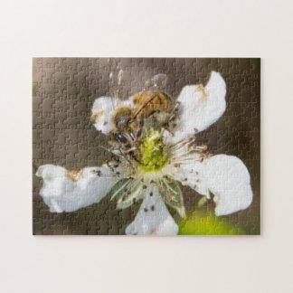 蜂蜜の蜂 ジグソーパズル