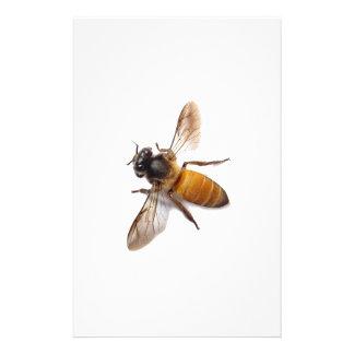蜂蜜の蜂 便箋