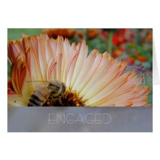 蜂蜜の陰 カード