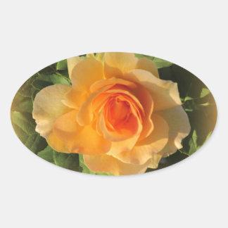 蜂蜜の香水のばら色のステッカー 楕円形シール