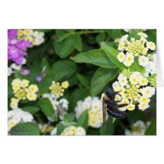 蜂蜜より甘い カード
