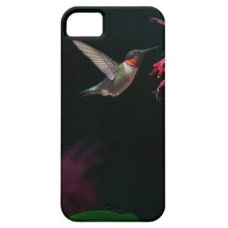 蜂香油のルビーthroatedハチドリ iPhone SE/5/5s ケース