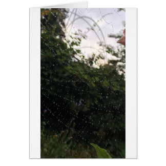蜘蛛の巣のノート カード