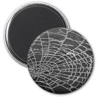 蜘蛛の巣 マグネット