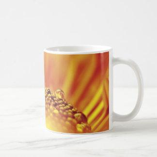 蜜柑のオレンジ花のクローズアップ コーヒーマグカップ