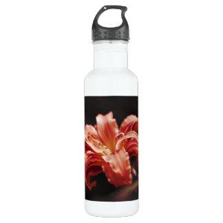 蜜柑のタンゴの花 ウォーターボトル