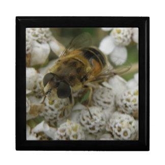 蜜蜂および花のギフト用の箱 ギフトボックス