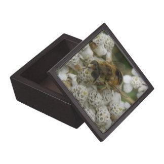 蜜蜂および花の優れたギフト用の箱 ギフトボックス