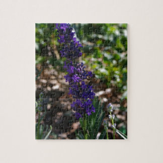 蜜蜂が付いているラベンダーの写真 ジグソーパズル