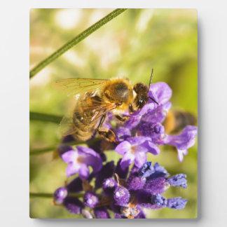 蜜蜂 フォトプラーク
