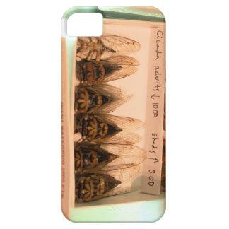 蝉の大人 iPhone 5 カバー